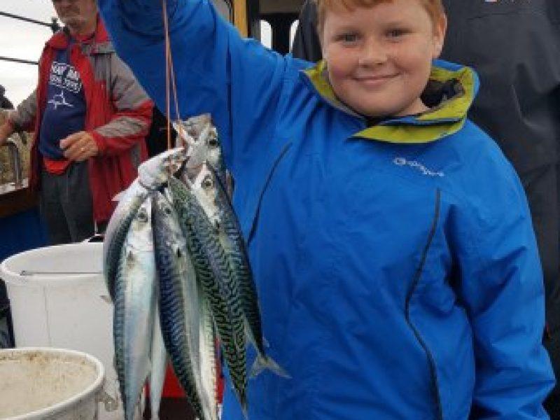 mackerel-48-main
